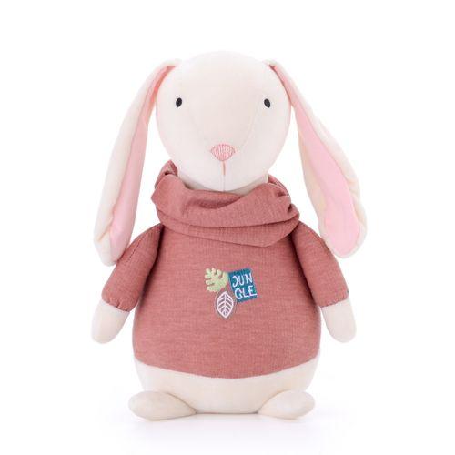 Farm-animal---orange-rabbit-1